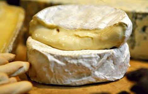 camembert_cheese_what_wine